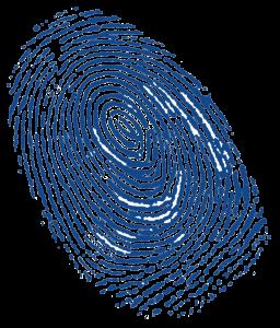 fingerprint slate blue